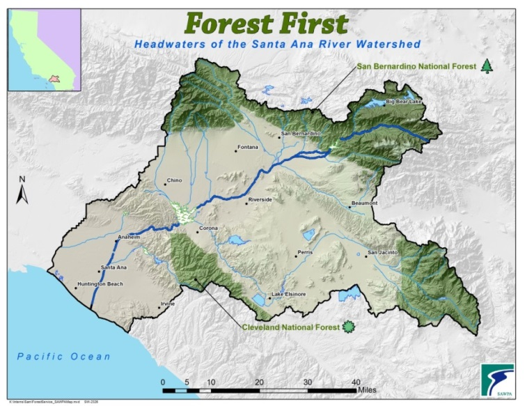 Forest First Map